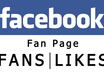 give Real Verified 150+ Fans or Likes On Your Fanpage small1