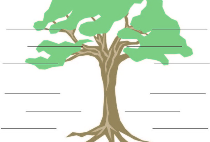 Create A Fake Family Tree Using Celebrity Names Cartoon