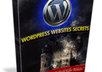 send you a EBOOK about WordPress Website Secrets
