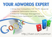 find your Competitors PPC or Organic Keywords on Google Adwords Network small1