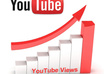give your Incredible YouTube Video 557+ Organic REAL Human Views small1