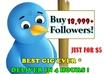 add 18,999+ BEST Top quality twitter followers to your twitter account without the need of your password in just 4 hours