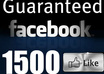 give 1500+ Top Quality Real looking and Permanent Facebook Likes From USA or Fans to your facebook fan Page all likes deliver within 1 hours