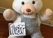 take a picture of a Teddy Bear with your message small1