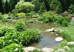 answer any plant,garden or pond question