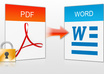 make 20 pages word document of your PDF file or jpg