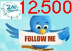 add 10,000 REAL Looking Twitter Followers To Your Profile In 24h, No Drops small1