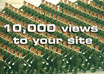 give you 10000 views to your site