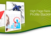 create 200++ verified backlinks do follow high PR web 2 profile and 30,000 blog comments small1