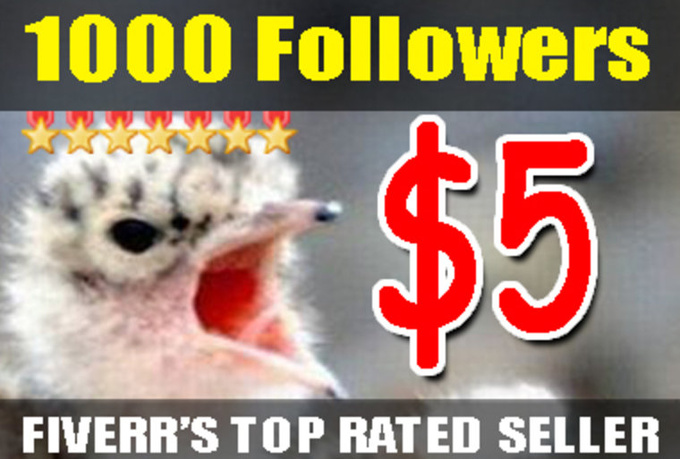 give you 1000 Real Twitter Followers and FREE Tweet to 16000 followers