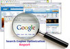create 50 page detailed SEO Report for your website, and show you how to Rank first Page in Google for a specific keyword